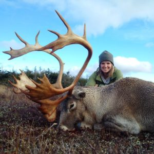 Woodland Caribou Hunting with Ironbound Outfitters Newfoundland