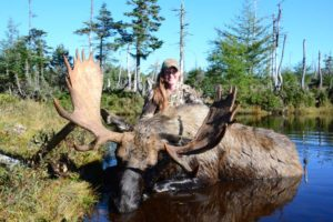 Newfoundland_Moose_Hunting_Ironbound_Outfitters_15100409