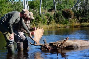 Newfoundland_Moose_Hunting_Ironbound_Outfitters_15100421