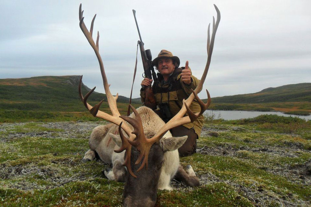 Newfoundland caribou hunting Ironbound Outfitters